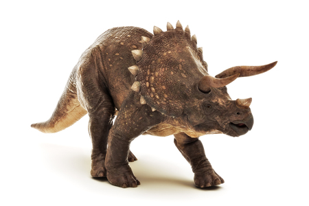Triceratops Jurassic dinosaur reptile on a white background. 3d rendering Stock fotó - 123841385