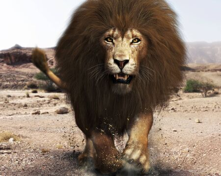 A ferocious angry lion, lord of the jungle ,closing in on its target. 3d rendering