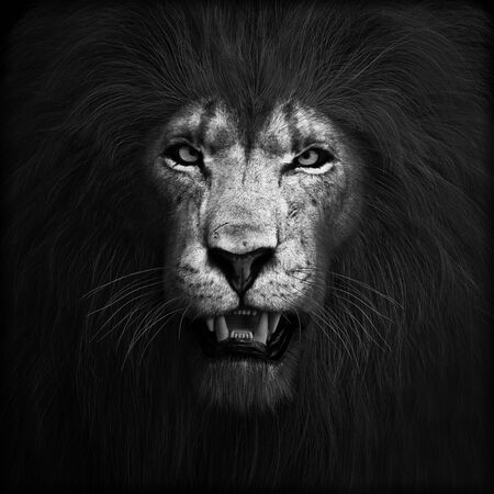 Portrait of a ferocious angry lion, lord of the jungle in black and white. 3d rendering
