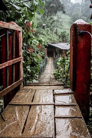 Bridge to campsite