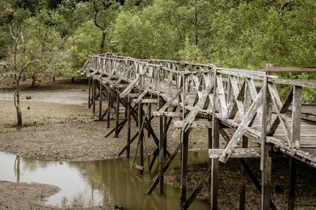 Bako National Park -  A Bridge Stok Fotoğraf