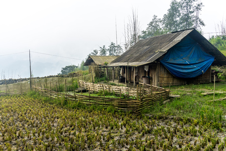 Homestay with Hmong People - local village Stockfoto