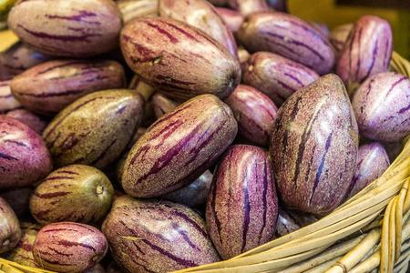 Pepino Melon found in the Cameron Highlands, Malaysia