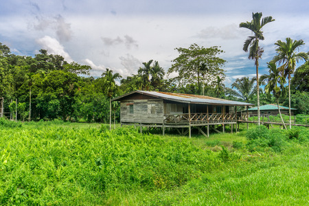 Mulu National Park - just outside the park