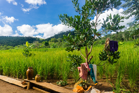 18km hike to a Bunung Village in Cambodia