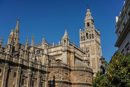 Around the city of Seville Фото со стока