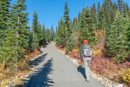 Mount Rainier just outside Seattle, Washington iwith autumn foliage