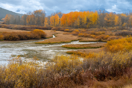 Lanscape View during Autumn in the Grand Tetons National Park, Wyoming USA