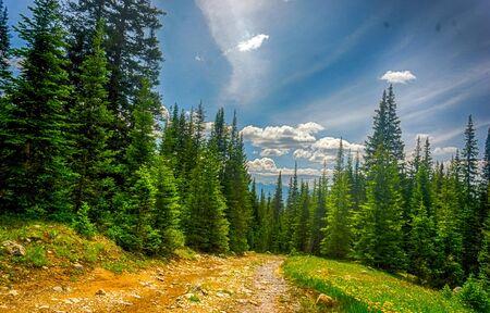 落基山Vista -风景