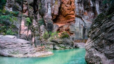 Hiking The Narrows at Zion National Park Imagens