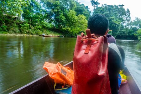 Parc national de Mulu - se rendre aux grottes Banque d'images