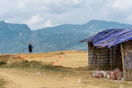 Dong Van (Ha Giang) Vietnam - Woman raking rice to dry it