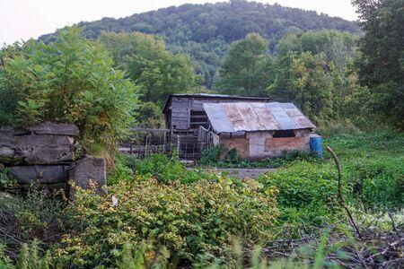 Shack in Farm 写真素材 - 138834772