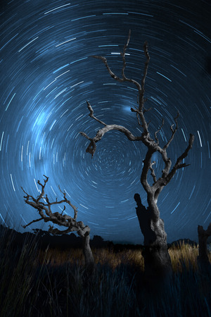 Star trails of the southern sky Standard-Bild