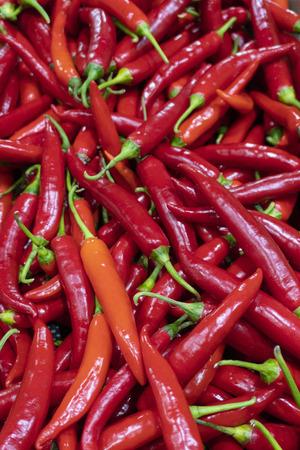 Red chilies at market Standard-Bild