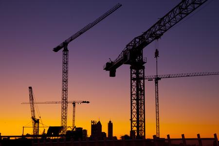 Silhouette cranes at sunset Standard-Bild