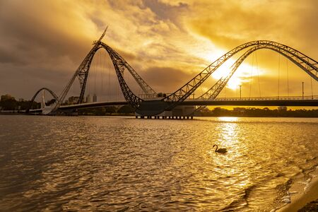 Silhouette of the Matagarup Bridge with a swan in the foreground.