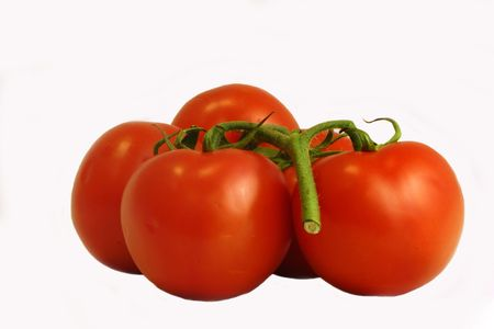 Tomatoes, isolated