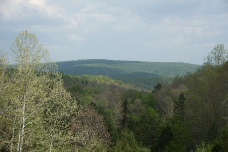 The rolling hills of the Ozark Mountains.