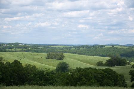 A southern Missouri landscape in the summer. 版權商用圖片