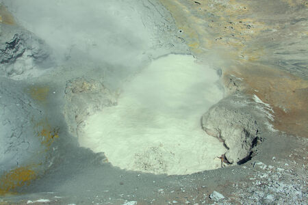 Bubbling mud in the mud volcano area of Yellowstone National Park.