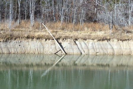 A steep bank of a lake with a tree branch.
