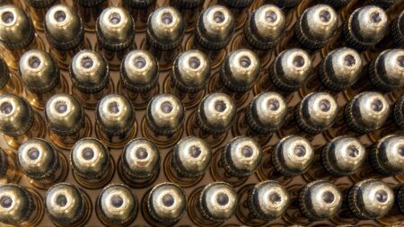 A top view of a group of bullets.