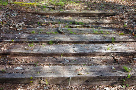 Wooden steps placed in the ground.