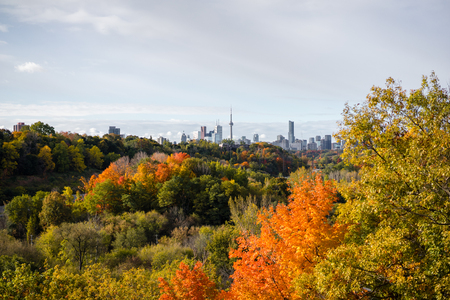 Don Valley autumn panorama looking toward Toronto downtown