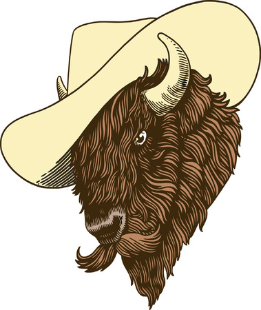Buffalo Stock Vector - 23965434