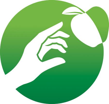 Apple Vektoros illusztráció