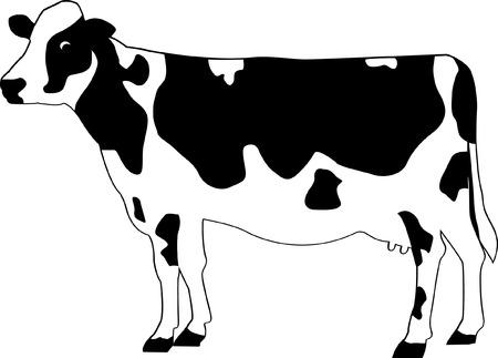 vaca caricatura: Vaca Vectores