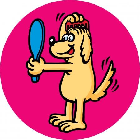 grooming: Grooming Dog