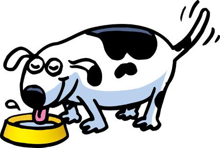 lap dog: Hungry Dog