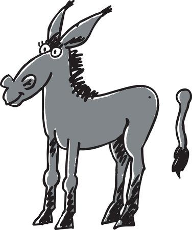 donkey tail: Burro