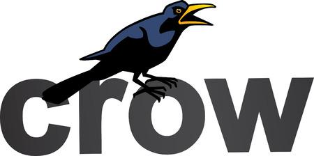 Crow Word Vector