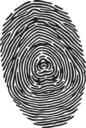 Finger Print Stock Vector - 24304656