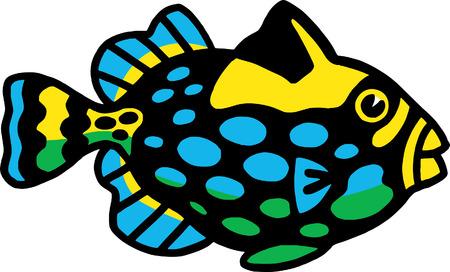 Fish Stock Vector - 24304682