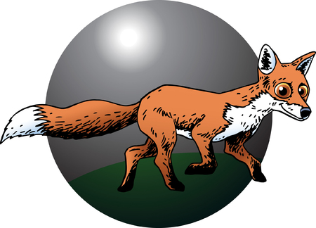 Fox Stock Vector - 24305333