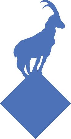 mountain goat: Mountain Goat