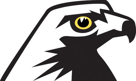 traits: Hawk