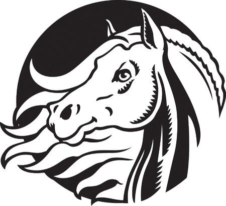 Stallion Vector