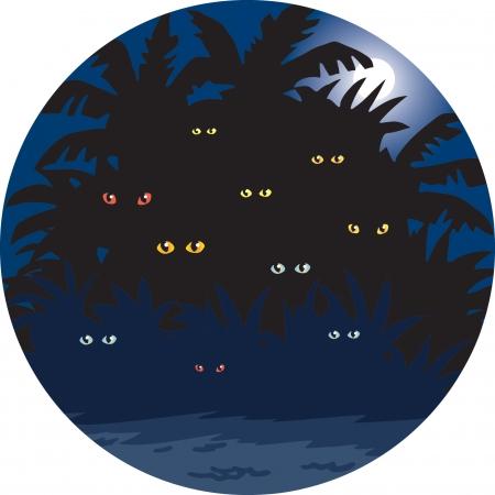 Jungle Night Illustration