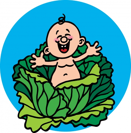 Cabbage Patch Vector