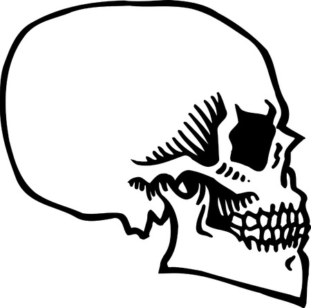 Skull Stock Vector - 24465014