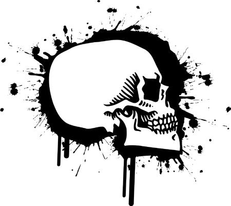 Skull Stock Vector - 24465484