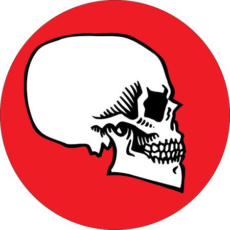 Skull Stock Vector - 24465499