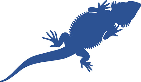 Lizzard Vector