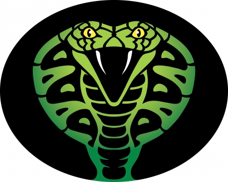 poisonous organism: Cobra Illustration