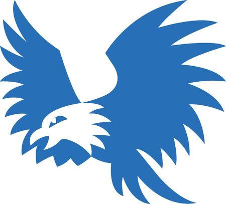 halcón: Halcón